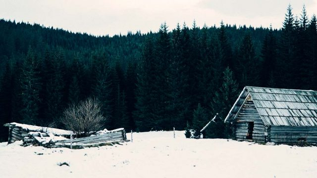 Lonely Cabin in the Woods
